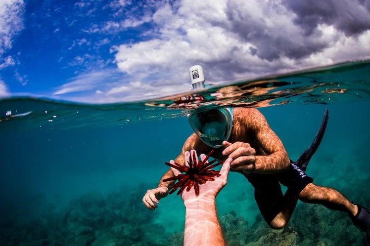 H2o-GoPro-Underwater-Ninja-Mask-01.jpg