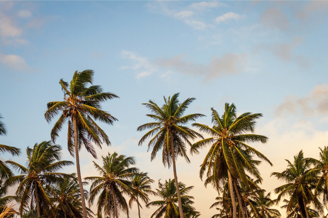 How Does Permanent Residency Work in the Cayman Islands?