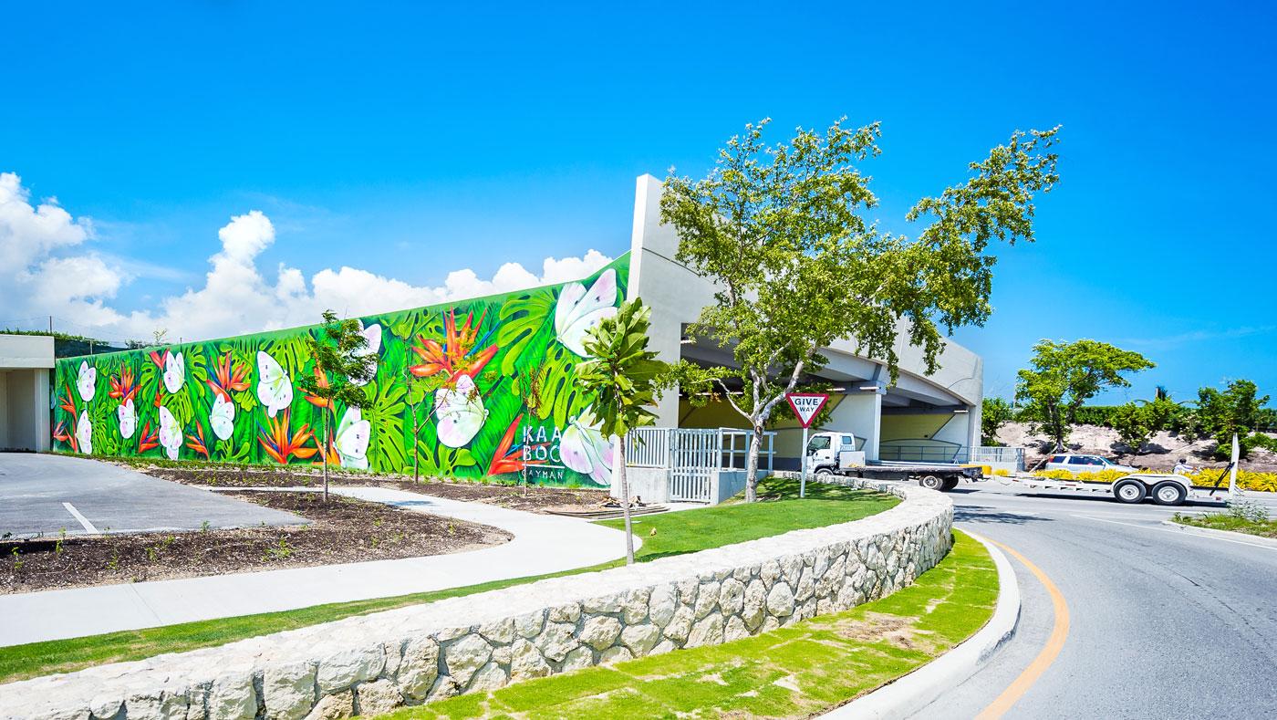 Kaaboo Cayman Mural