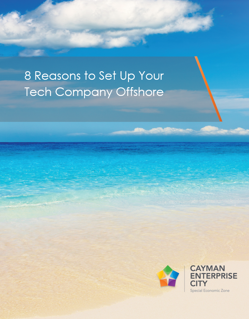 8 Reasons to Set-Up Your Technology Company Offshore